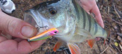 Como pescar con paseantes hundidos