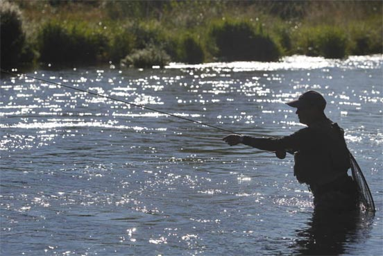 pesca-trucha-leon
