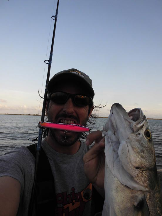 pescando con pencils y skipbaits