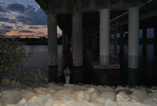 pescar lubinas a spinning nocturno