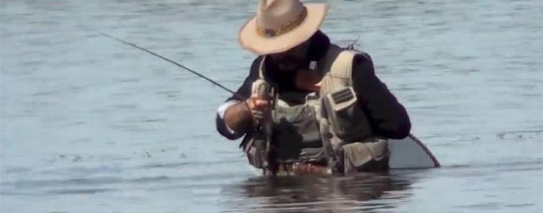 Pezcador al día, principales noticias de pesca (Junio 2018, 2)