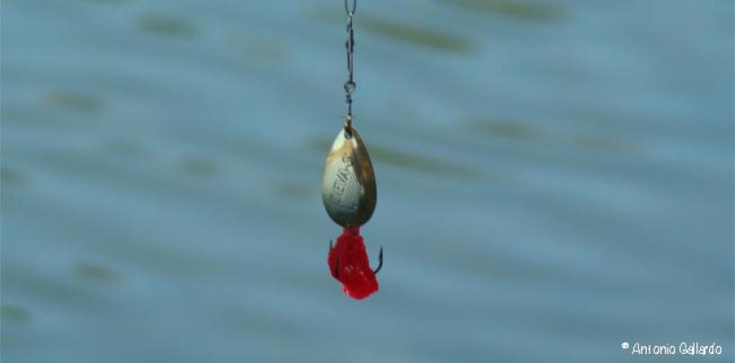 Las mejores cucharillas para la pesca con obstáculos sumergidos