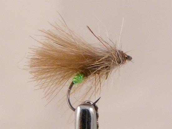 mosca-sarnosa