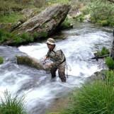 Pezcador al día, principales noticias de pesca (Octubre 2016, 4)