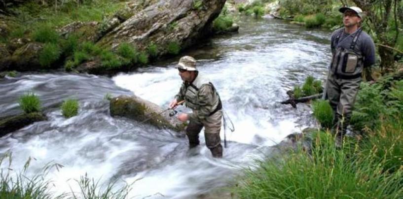 Truchas al tiento, una forma clásica de pescar que pervive