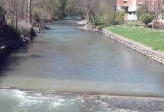 rio-selmo