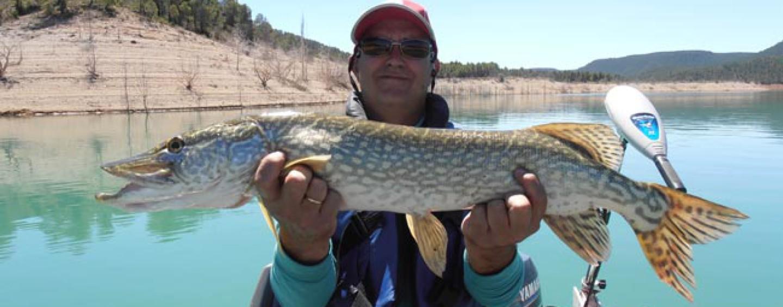 Pesca de lucios al curricán