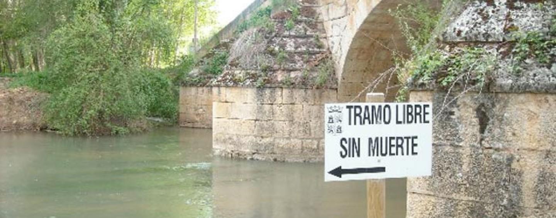 Cómo sacar la licencia de pesca de Castilla y León