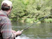 Pezcador al día, principales noticias de pesca (Mayo 2015, 1)