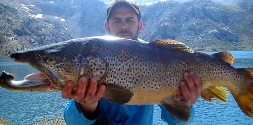 Pezcador al día, principales noticias de pesca (Mayo 2015, 5)