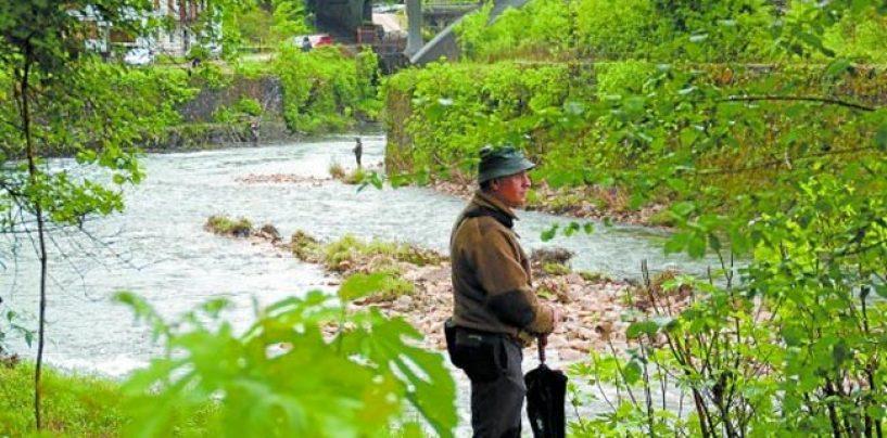 Pezcador al día, principales noticias de pesca (septiembre de 2018, 4)