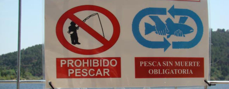 Cómo solicitar los cotos de pesca de Madrid