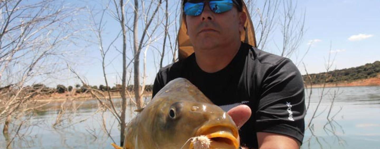 Pesca de carpas a mosca para principiantes