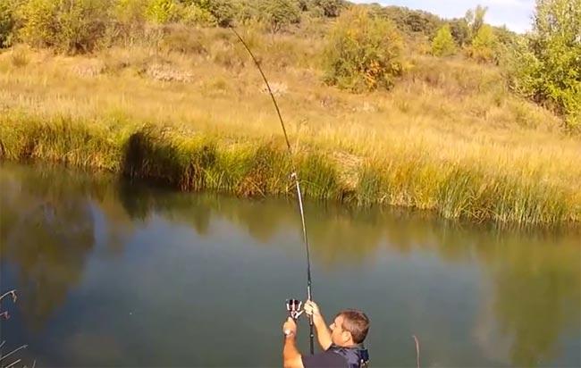 pesca-barbos