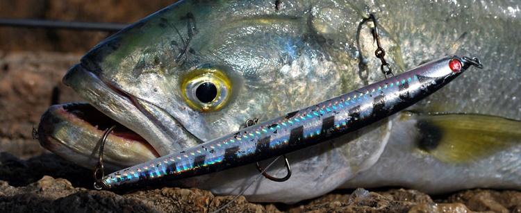 La pesca en komi sobre el hijo