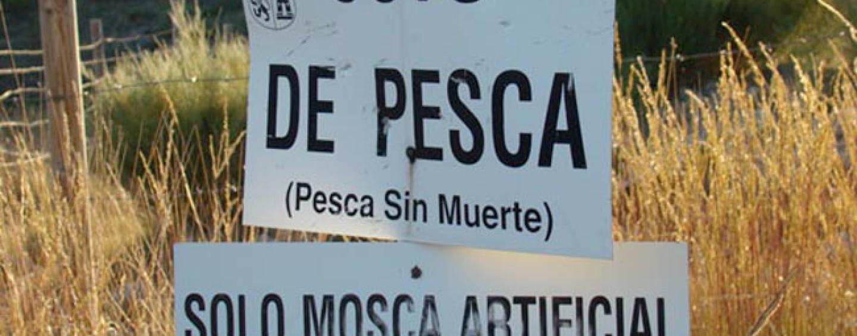 Cómo sacar permisos para cotos de pesca en Castilla y León