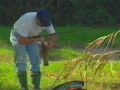 Vídeo de pesca: Pesca de Tencas