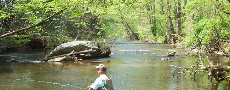Pezcador al día, principales noticias de pesca (Agosto 2015, 2)