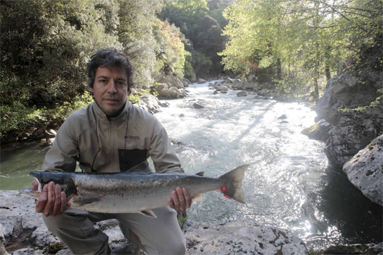 salmon_cantabria