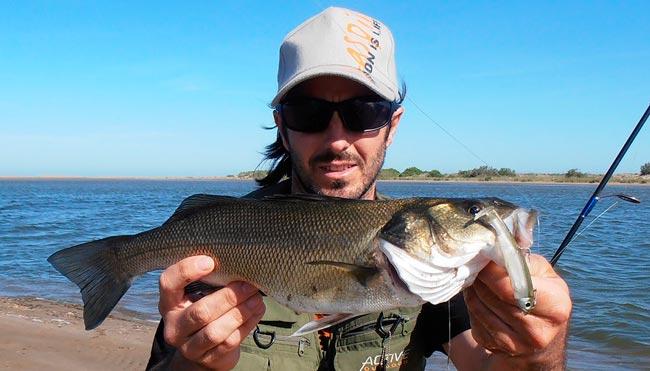 vinilo-de-pesca-black-bass