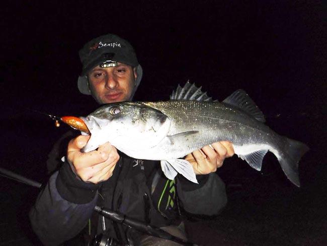 vinilo-de-pesca-lubina