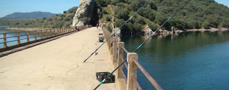 Pesca en el puente de Cogolludo, Embalse de Orellana