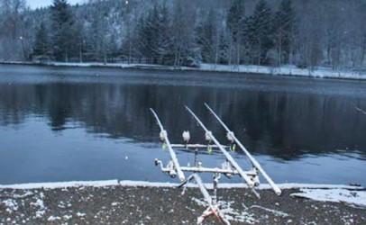 Qué podemos hacer para mejorar la pesca de carpas en Invierno