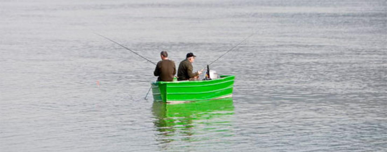 Pezcador al día, principales noticias de pesca (Octubre 2015, 2)