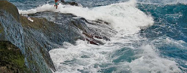 Pezcador al día, principales noticias de pesca (Mayo 2017, 1)