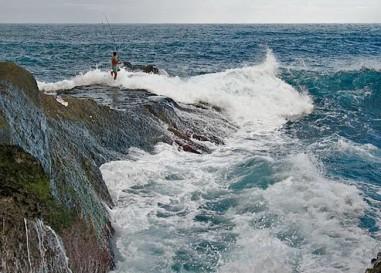 Los mejores cebos para la pesca rockfishing