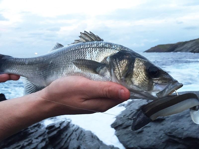 el clima en la pesca