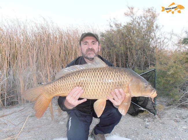 pesca de grandes carpas