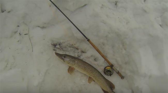 pesca-mosca-lucio-en-invierno