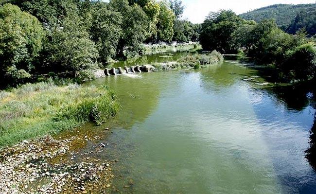 rio-umia
