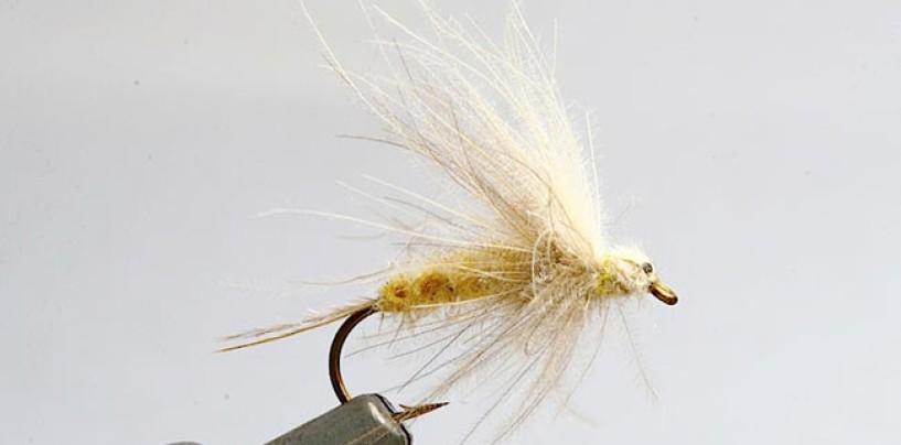 Razones que hacen a la efémera imprescindible para la pesca a mosca