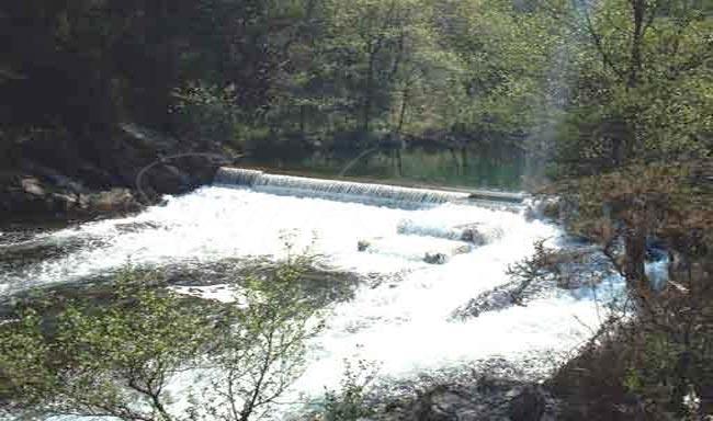 Salmón en el río Sor