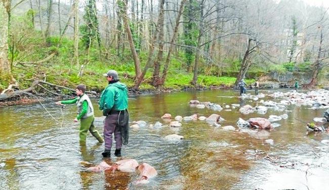 curso-de-pesca