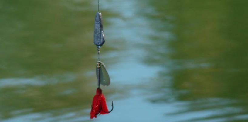 El color de las cucharillas en el arranque de temporada