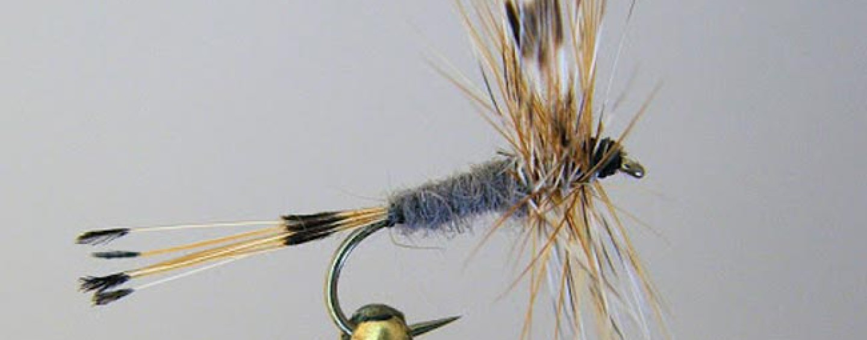 Adams, una mosca de fuera imprescindible para el pescador