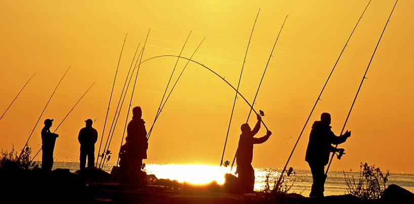 Como modificar la acción de una caña de pesca cambiando el anillado