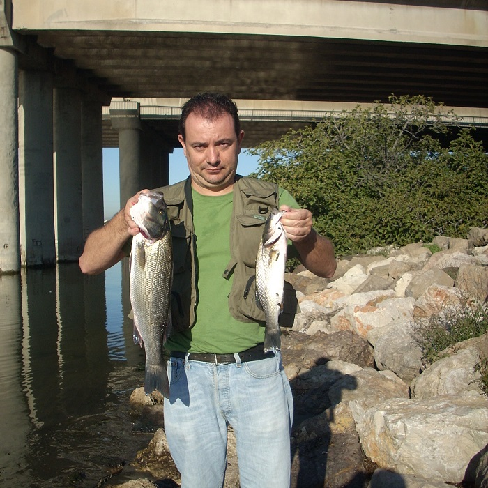 donde pescar lubinas a drop-shot