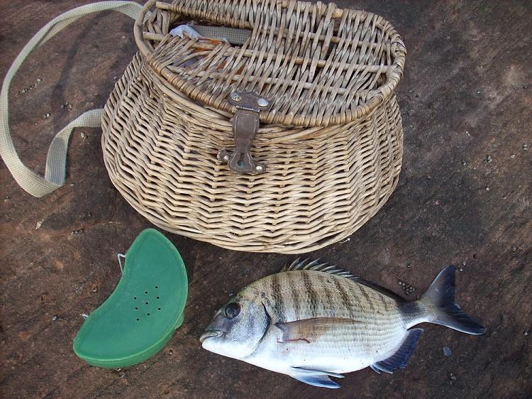 Pescar con cangrejos de río en el mar