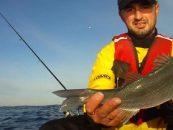 Vídeo de pesca: Lubinas desde kayak