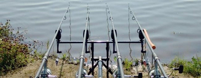 Pezcador al día, principales noticias de pesca (Mayo 2017, 2)