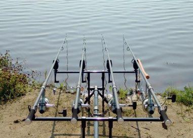 Conoce los puntos claves a la hora de elegir tu caña para pescar carpas