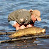 Pezcador al día, principales noticias de pesca (Agosto de 2016, 4)