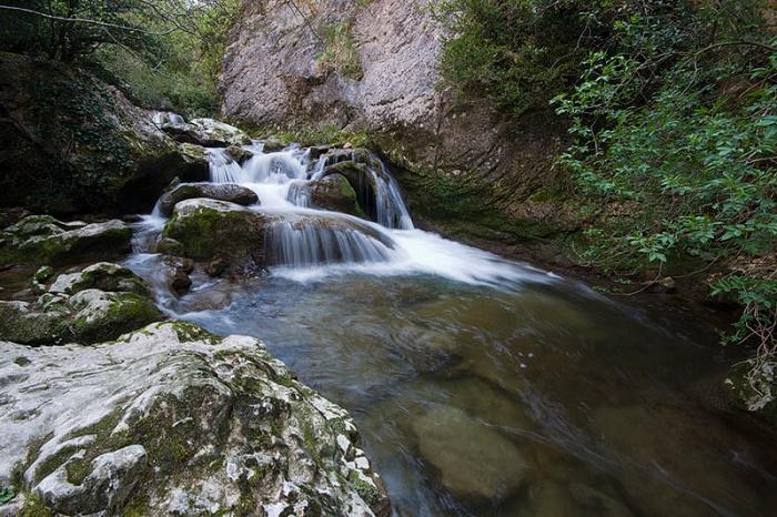 río Puron