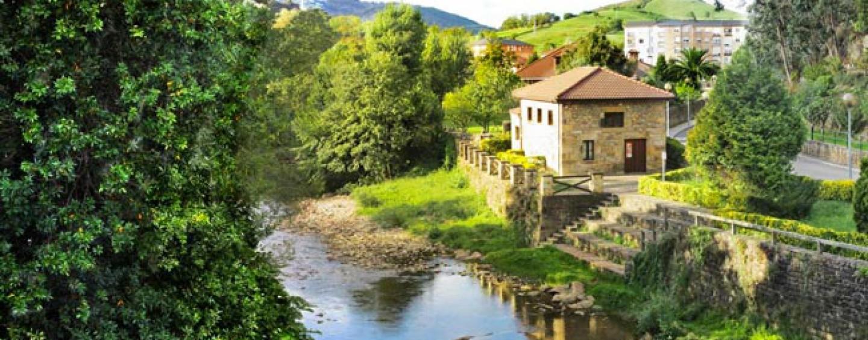 Los ríos salmoneros de España (XXII): La esperanza de recuperación del salmón en el río Miera