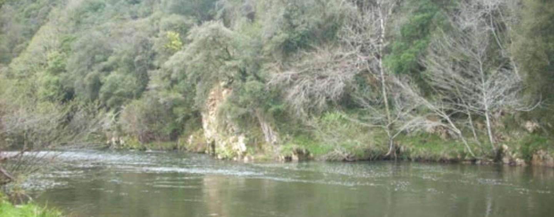 Los ríos salmoneros de España (XX): El salmón en el río Nansa, atrapado por el hormigón de las presas
