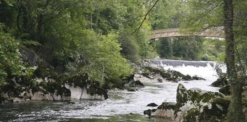 Los ríos salmoneros de España (XXI): El salmón en el río Pas y los problemas de captación de agua